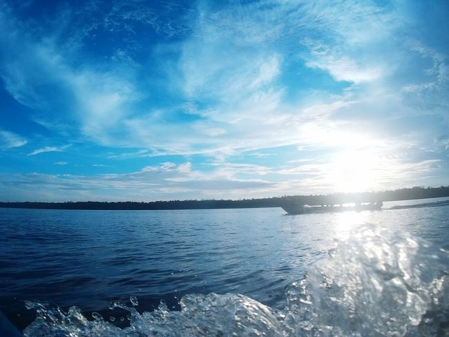Moring Sunset #sun #clouds #skylovers #sky #nature #beautifulinnature #naturalbeauty #photography #landscape Inspiration The Great Outdoors With Adobe Kompasnusantara Photonature  INDONESIA Papua Indonesia