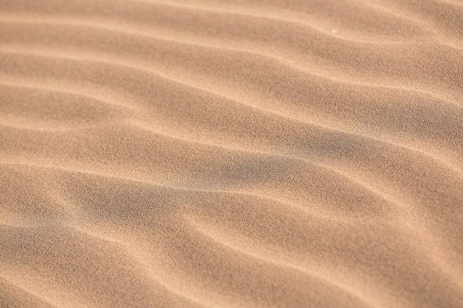 first step in to the sand land Africa Desert Morocco Outdoors Relief Sahara Desert Sand Travel Destinations