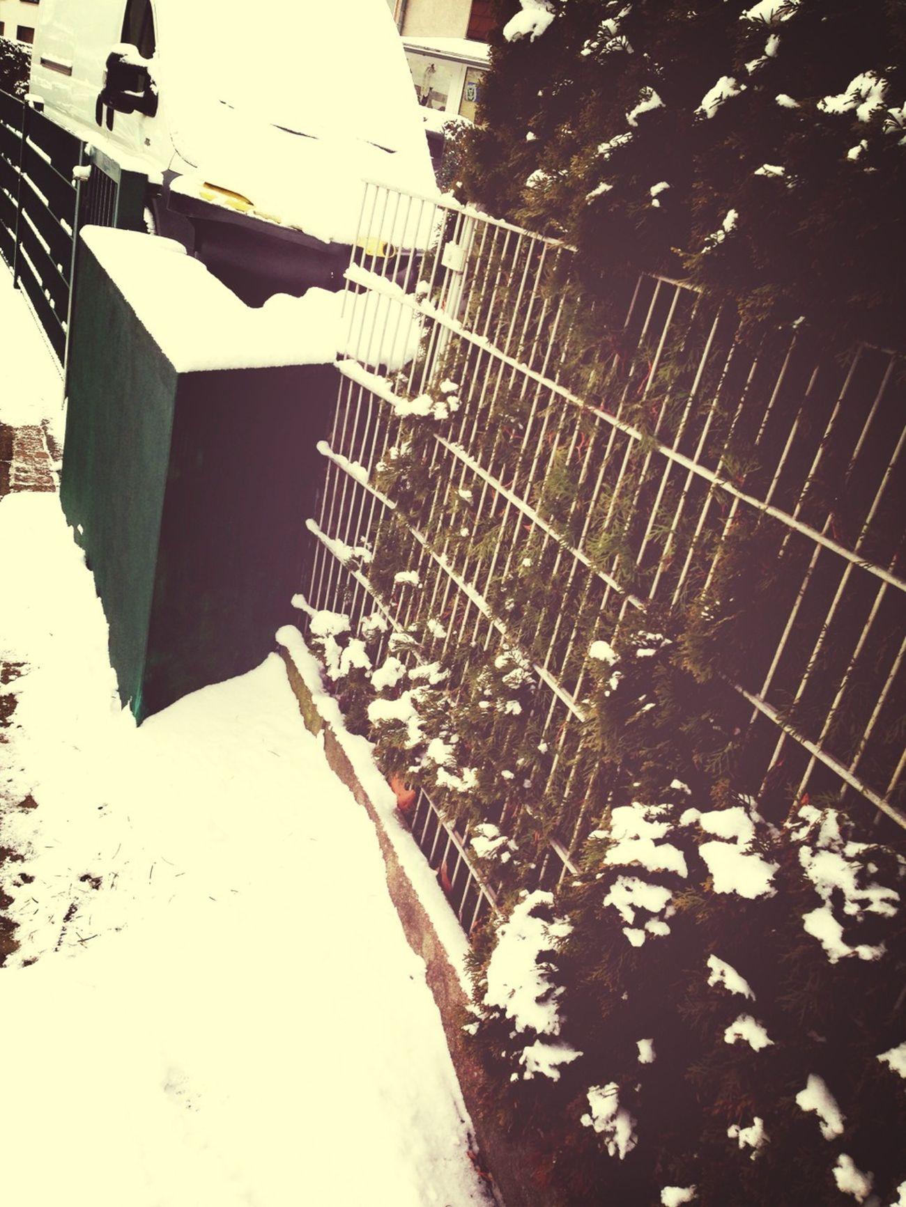 EyeEm Best Shots Snow EyeEm Nature Lover EyeEmBestEdits