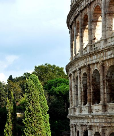 Architecture Colloseum In Rome Culture Famous Place Historic History Kolosseum Rome Colloseum Sight Tourism Travel Destinations Trees Adapted To The City Live For The Story