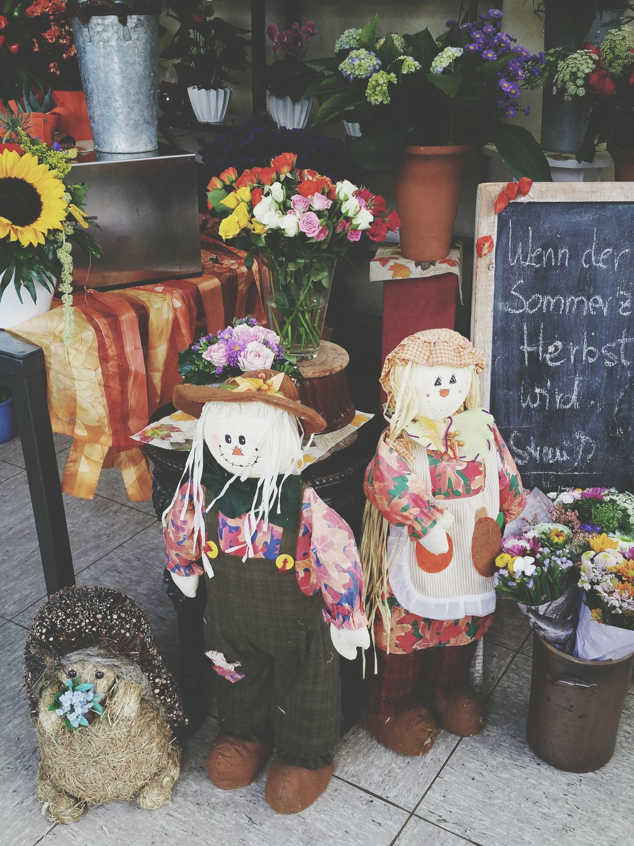 Flower Shop Flower For Sale Small Business Large Group Of Objects Shop StillLife Autumndecoration Dolls Decoration Autumn Multi Colored Indoors