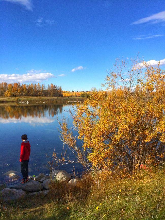 Beautiful autumn day. Seasons Autumn Nature A Walk In The Park