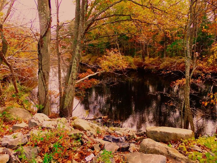 Hometown Visit Massachusetts Simplyscenic Simplyscenic_photography