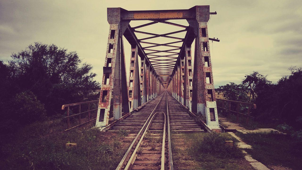 Bridge Train Tracks Train