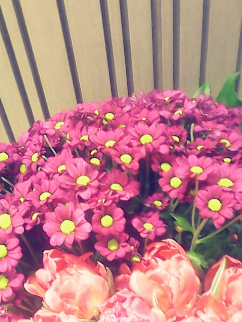 Flower flower in the air, bring my loveone near