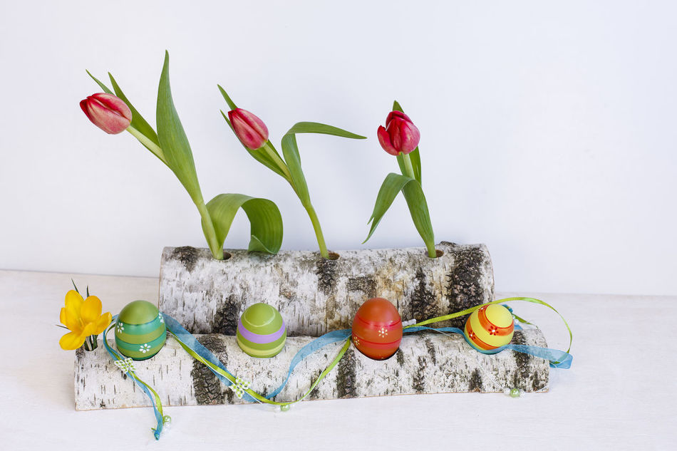 Animal Representation Arrangement Art And Craft Colorful Creativity Decoration Decorative Easter Eggs Flower Freshness Green Color Group Of Objects Ideas Kreatives Large Group Of Objects Memories Multi Colored No People Ornament Stem Still Life Tulips Tulips Flowers Variation White Background