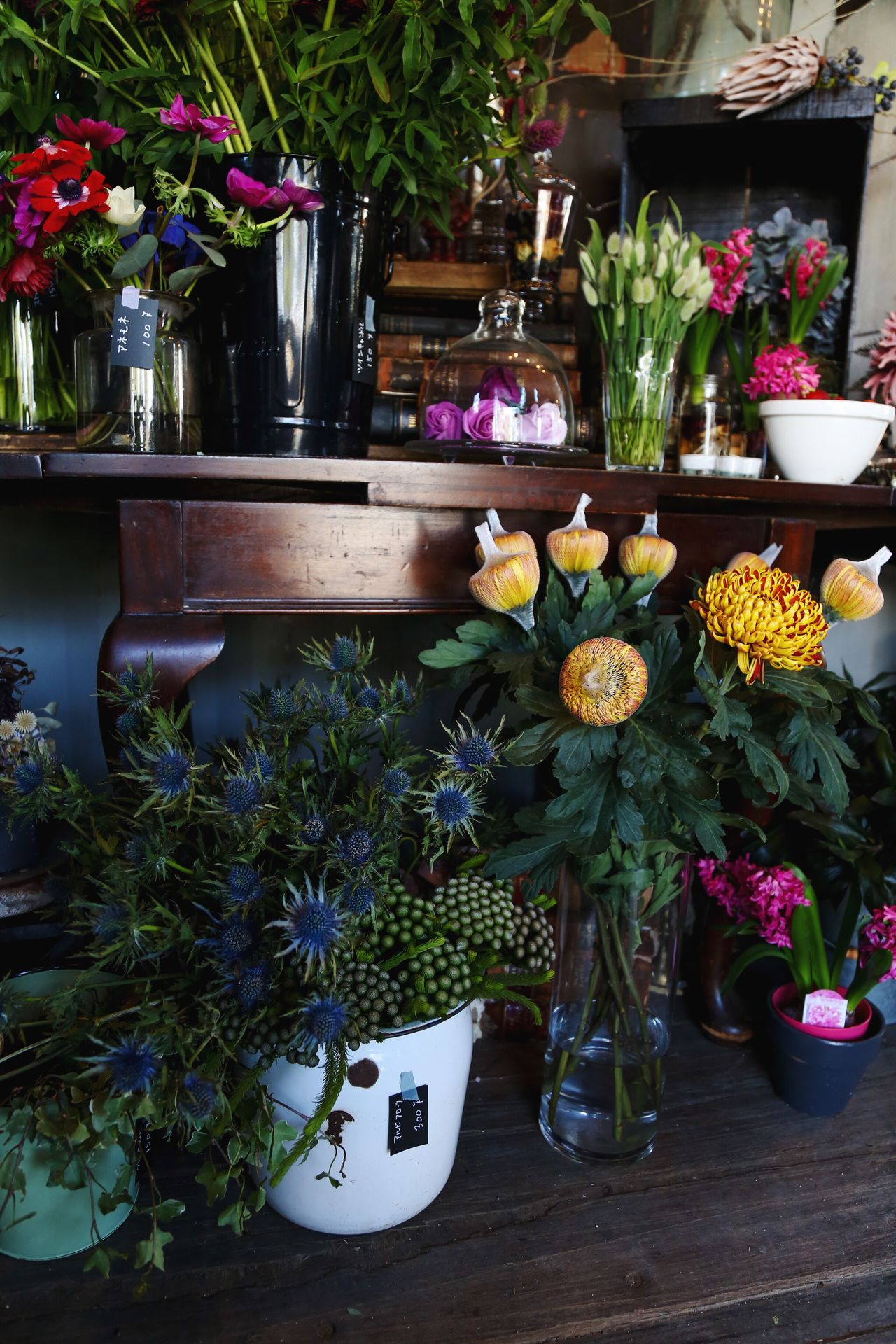 at Shandelle Flower Potted Plant Flower Pot Flower Arrangement Flower Shop Antique Colorful Plant Flower Arrangement Beautiful Japan No People PLZ FOLLOW ME