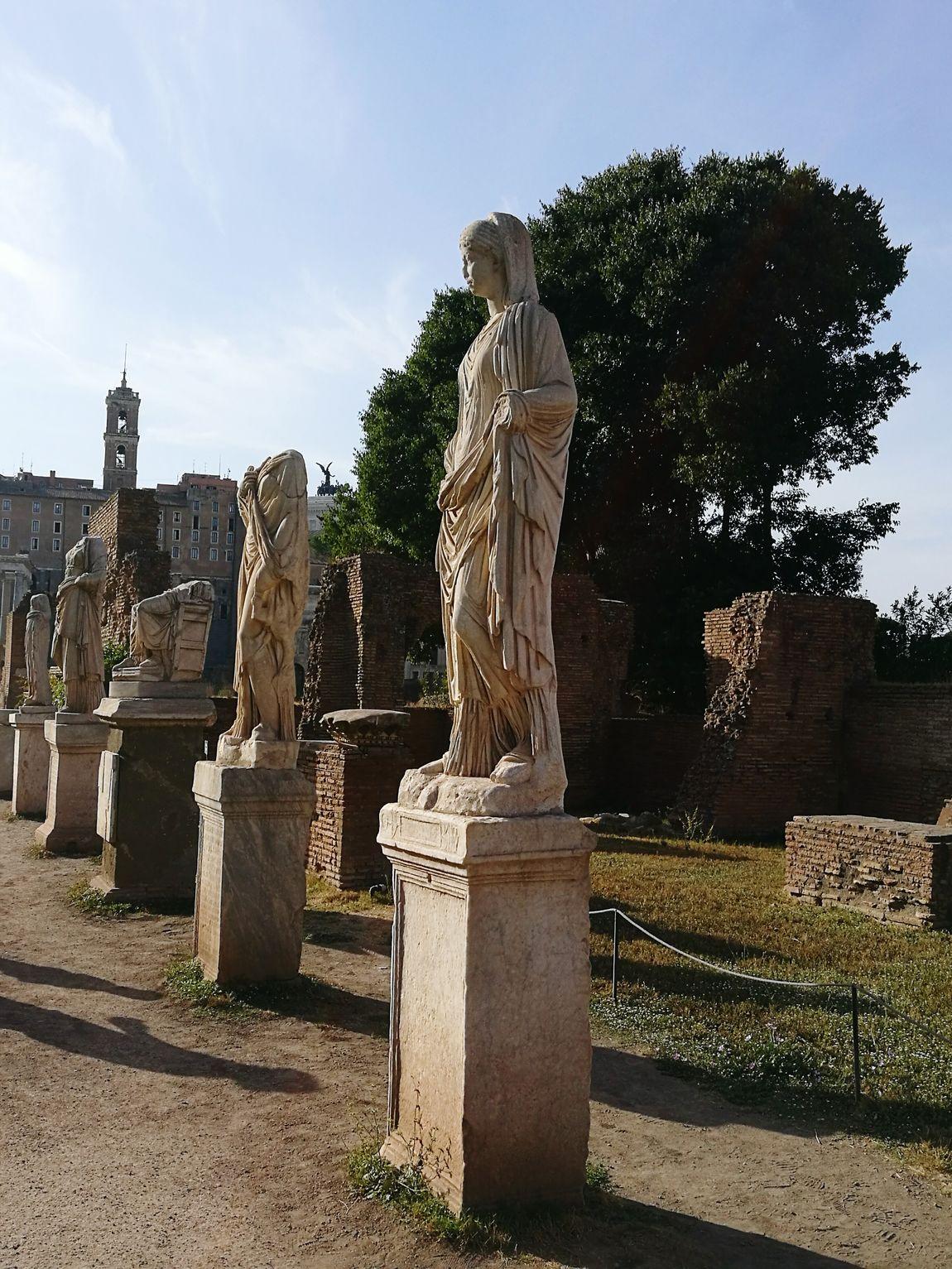 Roman Forum Palentine Hill Italy🇮🇹