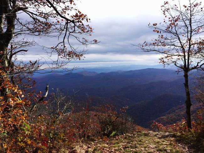 Mountain Mountain Range Blue Ridge Mountains North Carolina Tranquil Scene Cloud - Sky Landscape Tree Autumn Beauty In Nature Nature Day Remote Outdoors Majestic Cloudy Tourism Tranquility Non-urban Scene Getting Away From It All