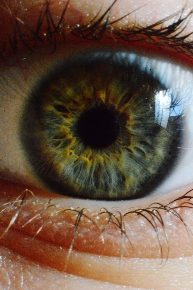 Foto macro con lente inversor EyeEm Macro Chile Ojo Macro That's Me Hello World
