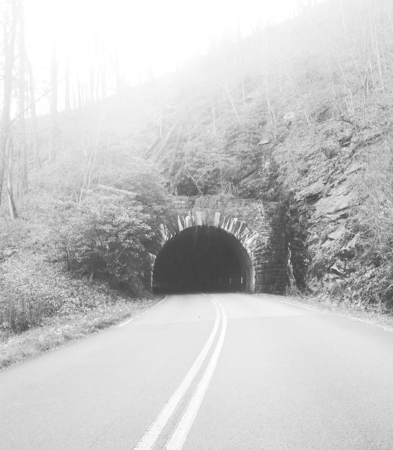 Tunnel love Tunnel Tunnel View Road Road Trip Traveling Travel Photography Blueridgeparkway Blueridgemountains Love Enjoying Life Taking Photos Beautiful Nature Nature Photography EyeEm Nature Lover Autumn Fall Blackandwhite Blackandwhite Photography