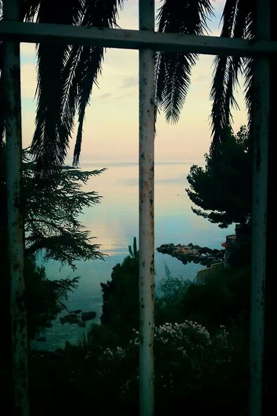 France, Bandol. i love it there! Morning Light In France Taking Photos Enjoying Life Hello World