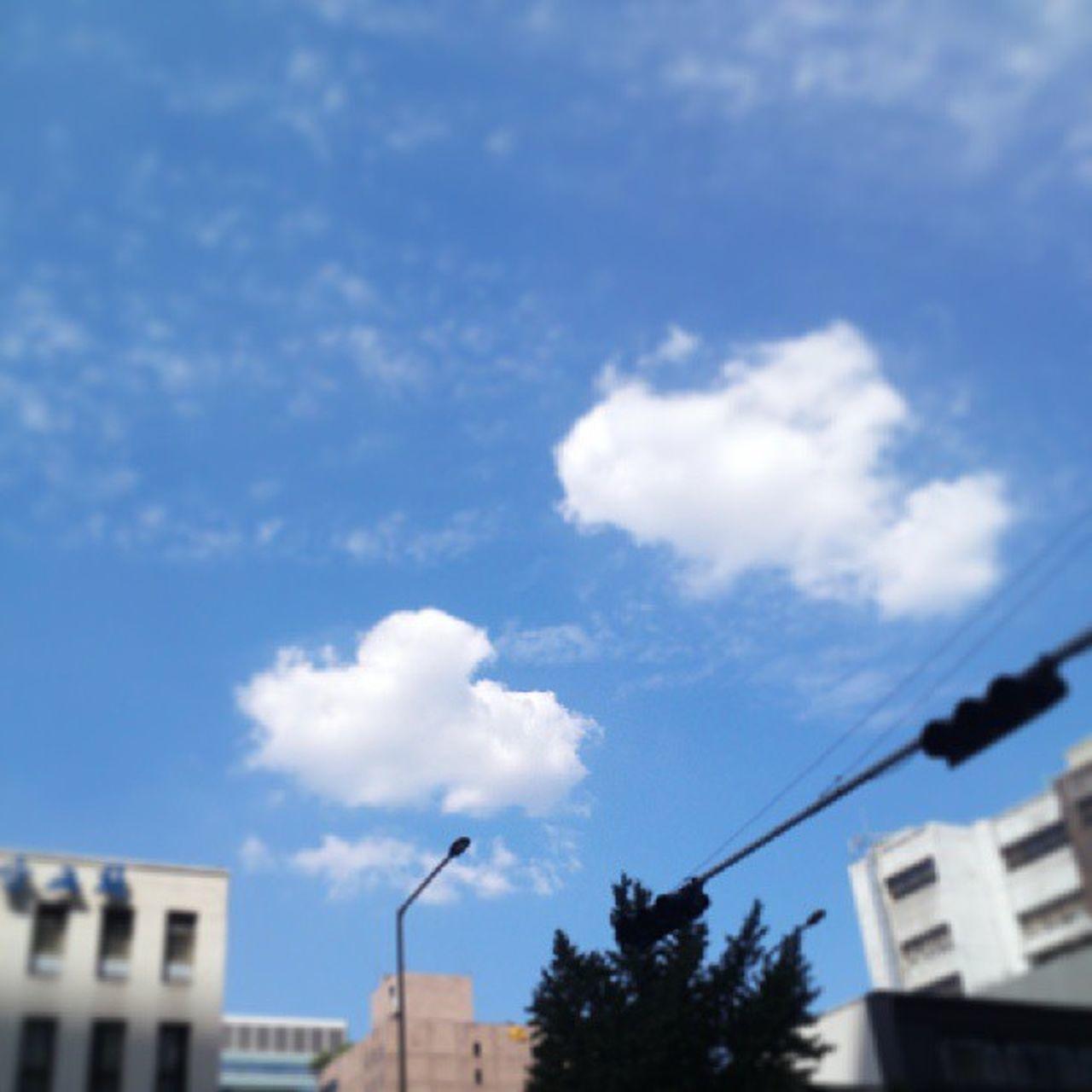 맑은 광화문 하늘 Sky