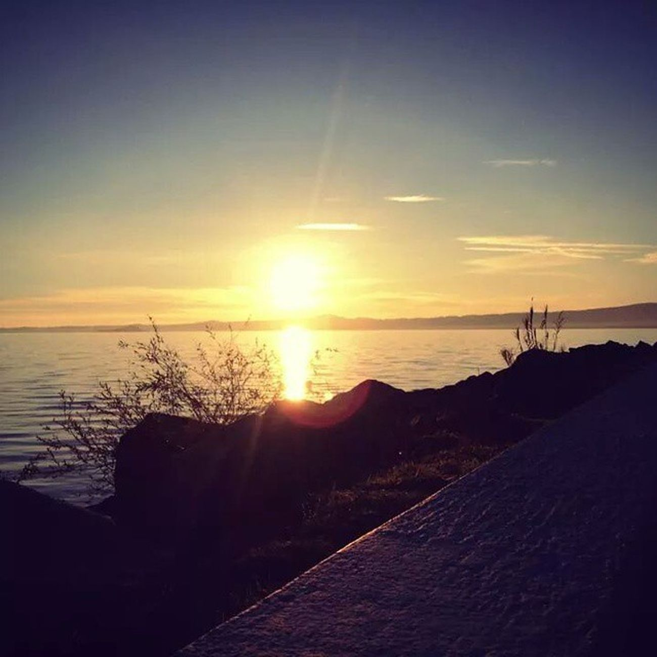 Lago Lake Bolsena Bolsenalake Umbria Viterbo Landscape Visittuscia Lazio Visitbolsena Instanature Natura Instavacation Etruria Estestest Paesaggio Tusciafotografia Tuscania Tramonto Sunshine Annonuovo Sunset Sole Inverno Sunnyday