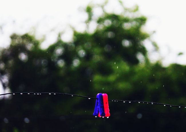 Beautifulday EyeEm Best Shots EyeEm Best Edits Eye4photography  Eyemphotography Make Magic Happen Feel The Moment For The Love Of Colour For The Love Of Rain Raindrops