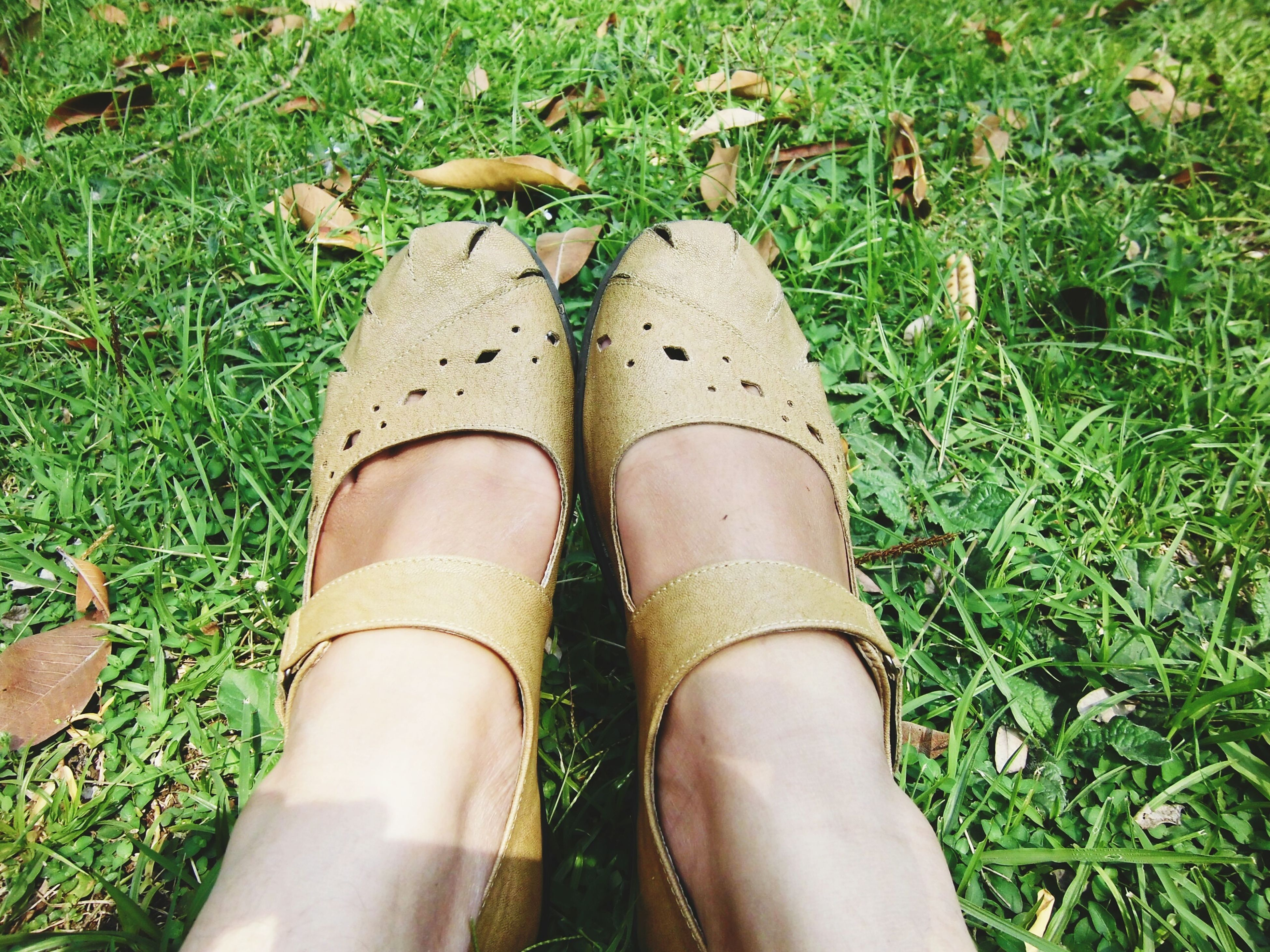 low section, person, personal perspective, grass, shoe, high angle view, human foot, green color, footwear, grassy, field, part of, standing, plant, close-up, day, directly above