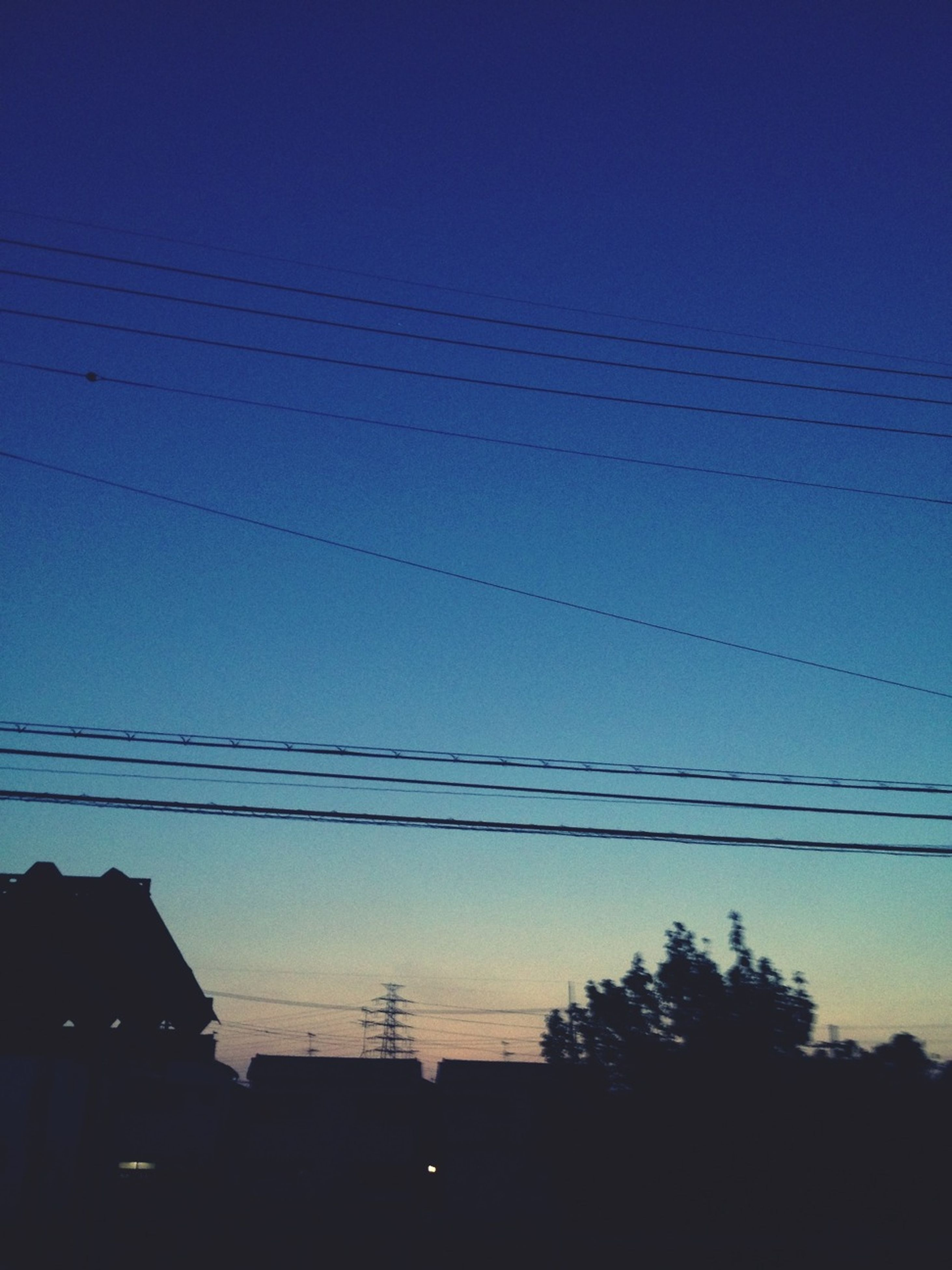 silhouette, low angle view, power line, blue, sunset, sky, electricity pylon, cable, bird, dusk, electricity, clear sky, nature, beauty in nature, power supply, animal themes, connection, tranquility, tree, scenics