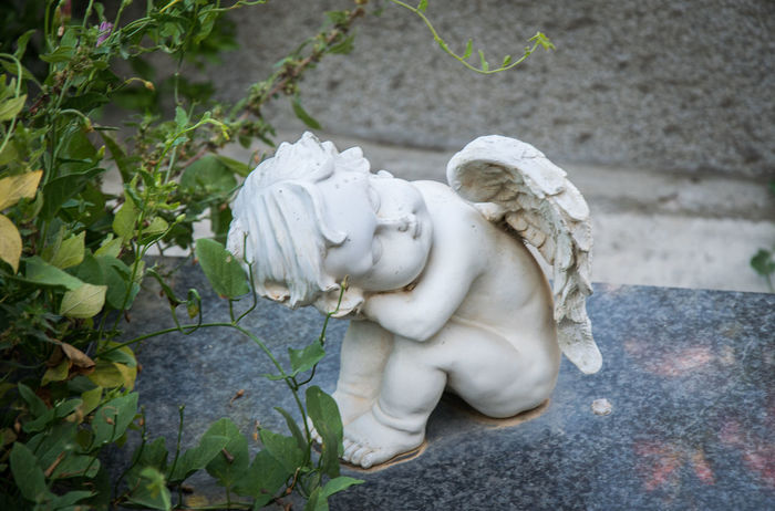 Angel Cemetery Leaf Mourn Mourning Plant Sculpture Sculptures Statue Stone Angel