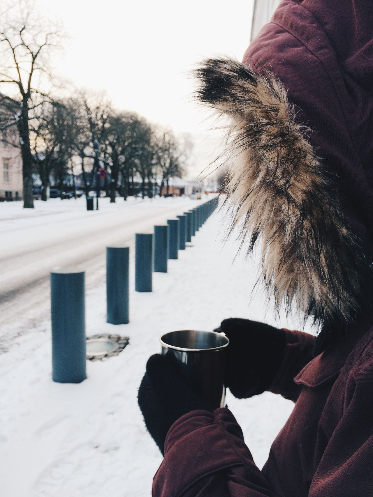Beautiful stock photos of norway, Bollard, Close-Up, Cold Temperature, Covered