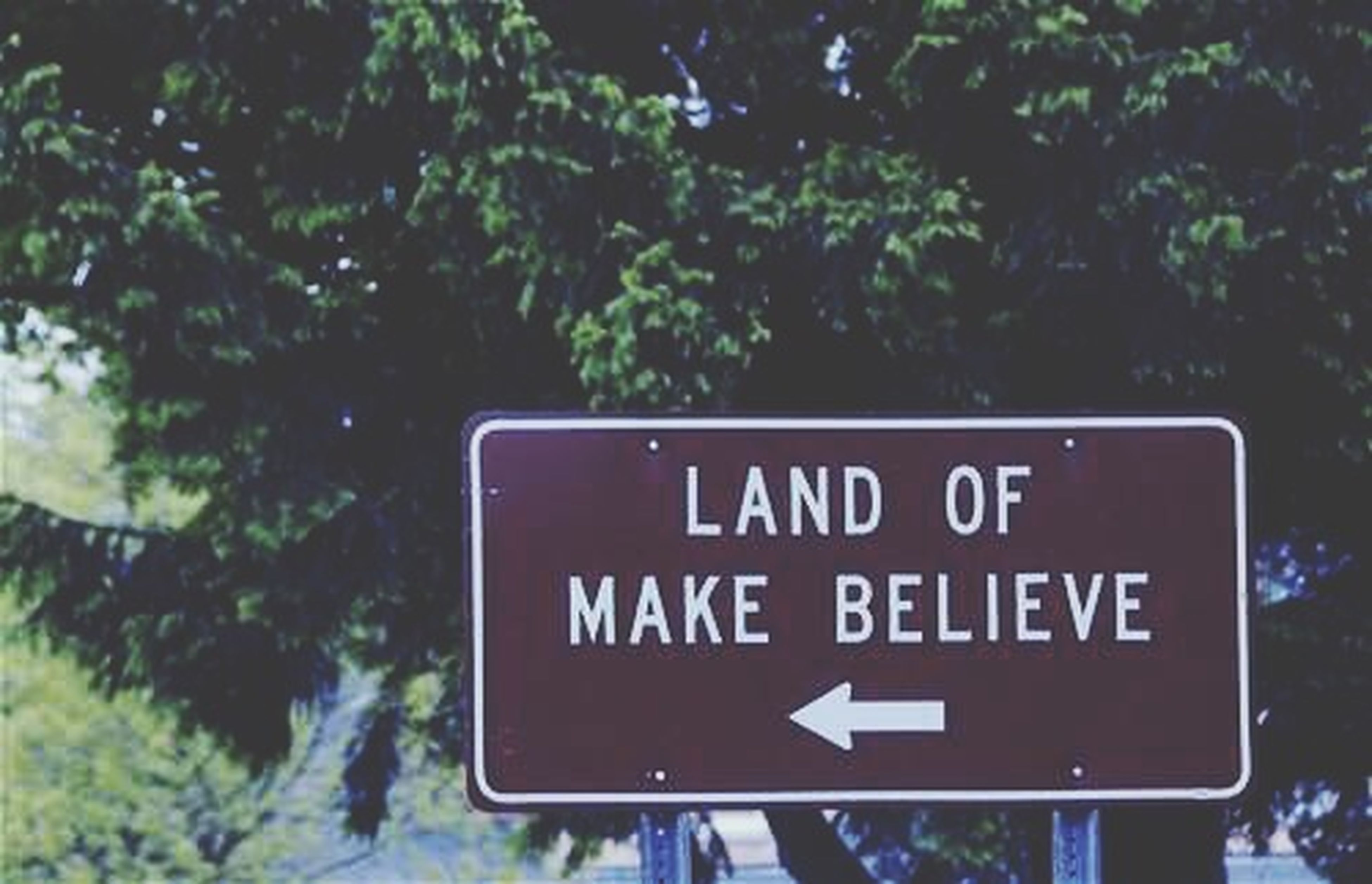 text, communication, western script, information sign, sign, guidance, information, capital letter, close-up, warning sign, road sign, tree, arrow symbol, focus on foreground, number, direction, non-western script, directional sign, low angle view, no people