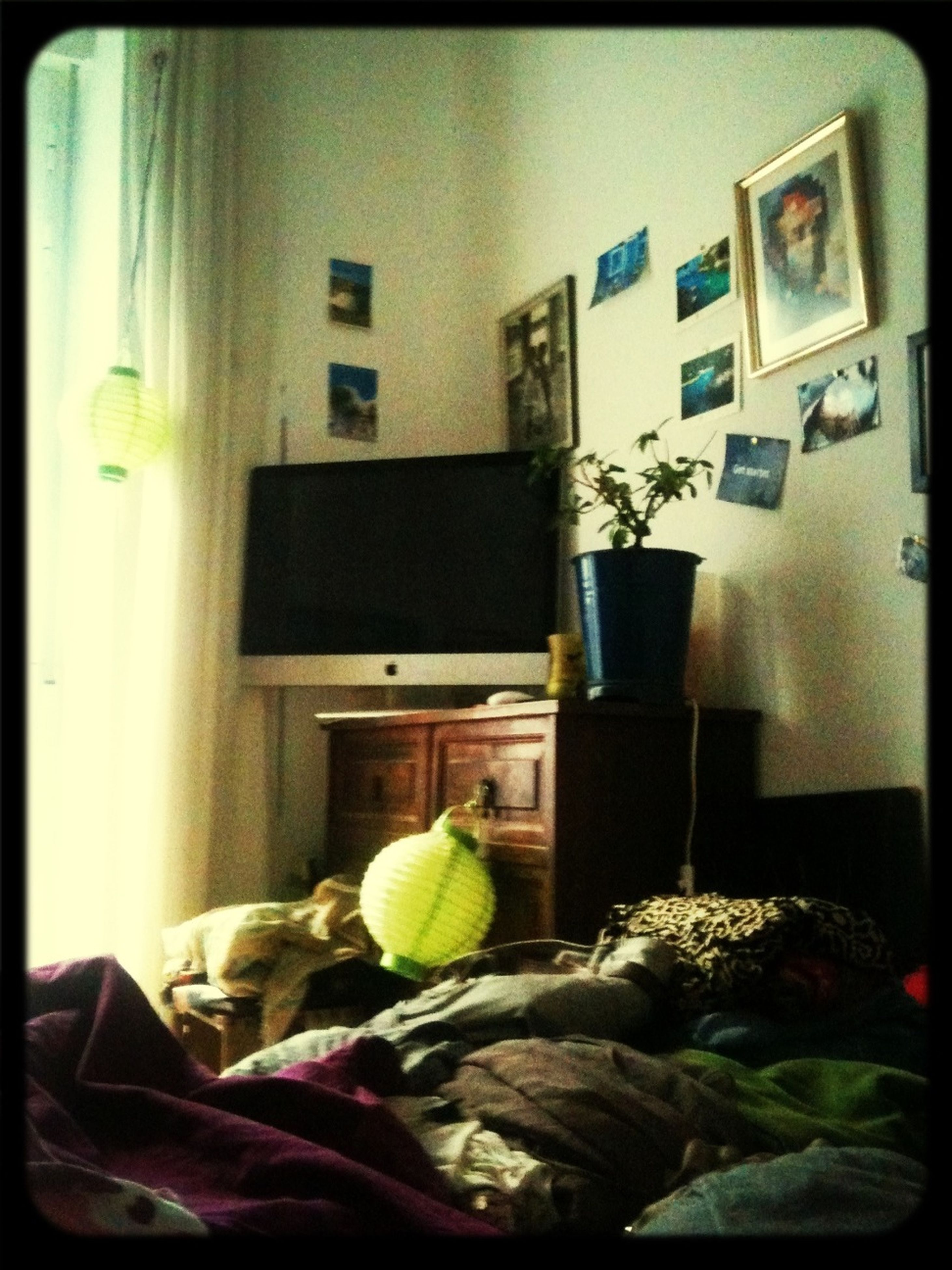 indoors, home interior, transfer print, auto post production filter, table, house, potted plant, window, chair, domestic room, built structure, architecture, home, no people, domestic life, still life, absence, sofa, day, living room