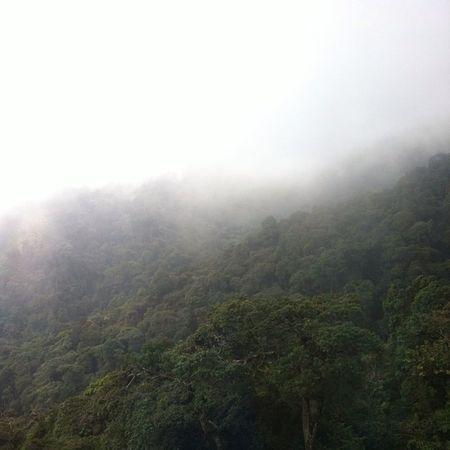 Through the Clouds .. Malaysia Genting Cablecars Holidayfun