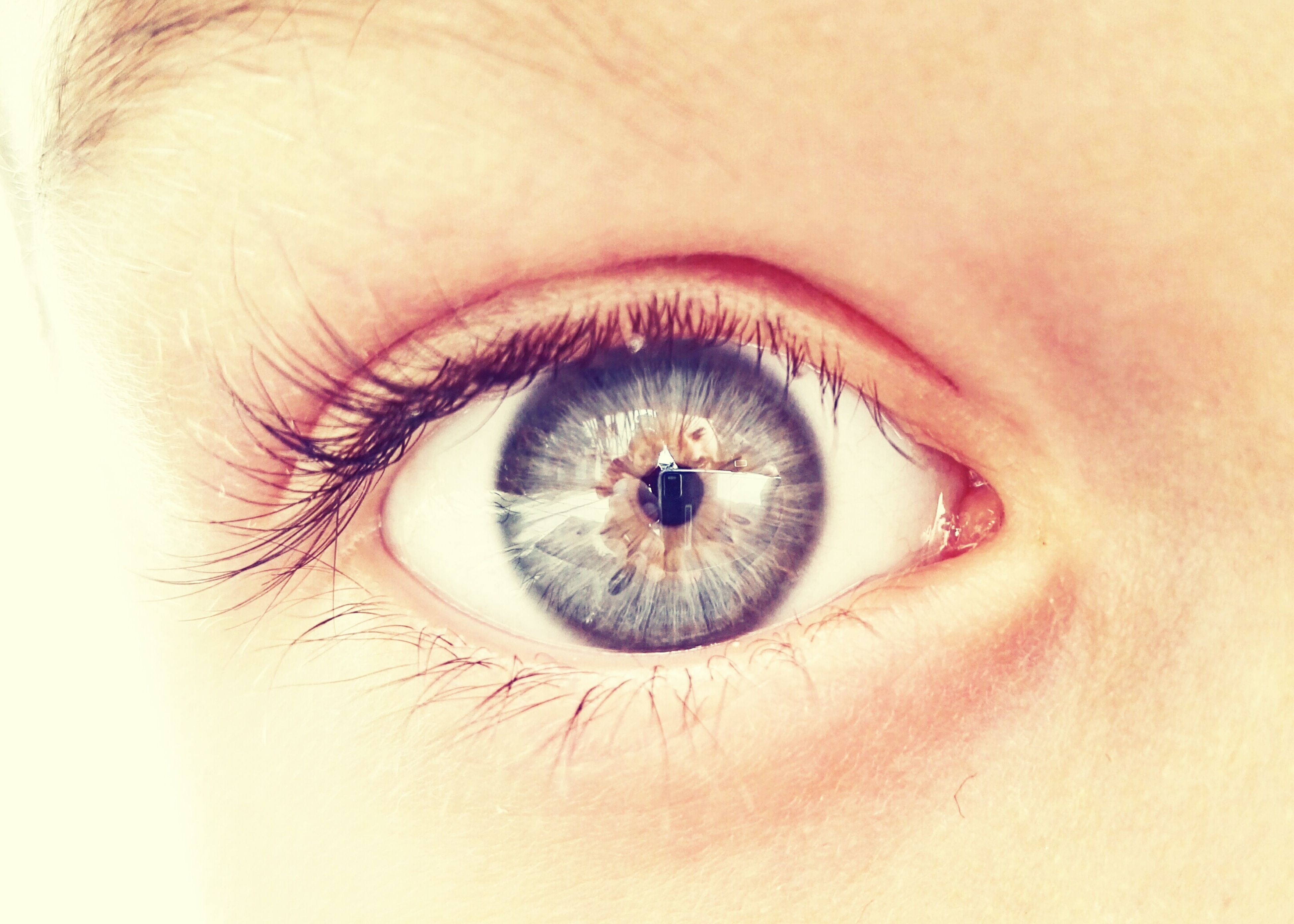 human eye, eyelash, eyesight, sensory perception, close-up, iris - eye, extreme close-up, looking at camera, portrait, part of, eyeball, human skin, vision, eyebrow, full frame, unrecognizable person, extreme close up