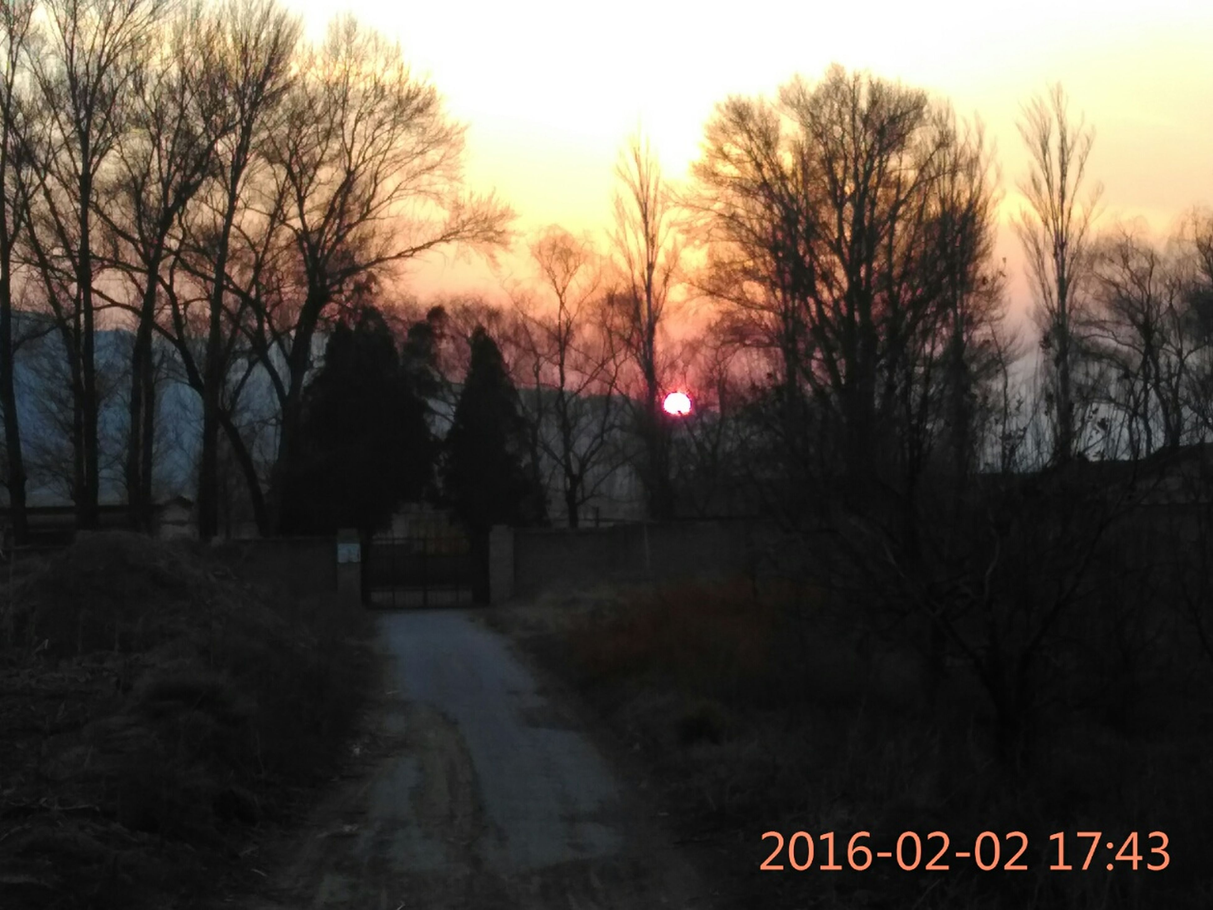 sunset, bare tree, tree, sky, text, silhouette, tranquil scene, tranquility, dusk, road, transportation, nature, scenics, orange color, western script, landscape, communication, beauty in nature, outdoors, branch