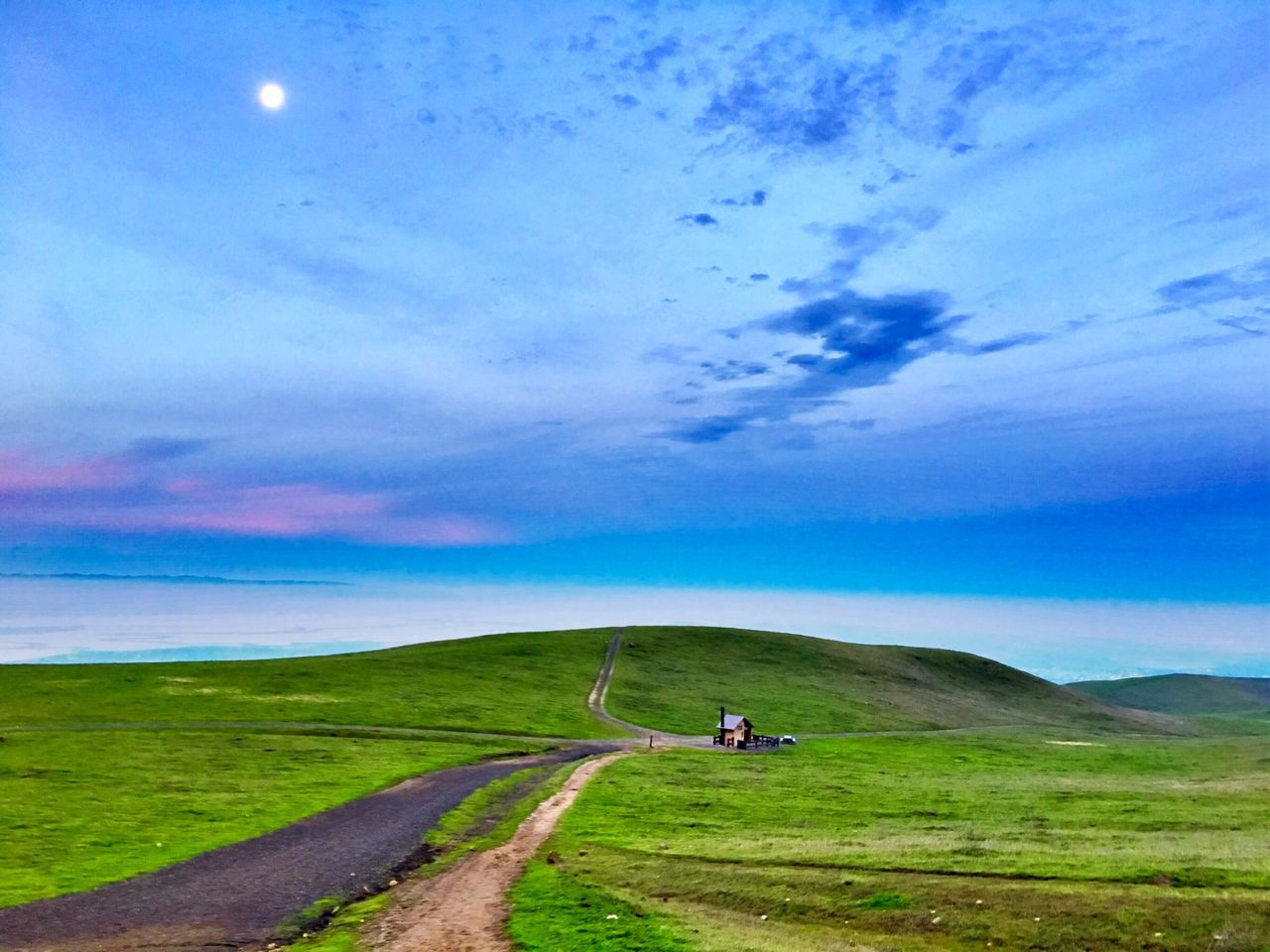 Mission Peak in Fremont, Ca last year. Hiked early and watched the sunrise. Sky Real People Grass Beauty In Nature Nature Outdoors The Way Forward Transportation Tranquility Scenics Landscape Tranquil Scene Cloud - Sky Day Men One Person Tree Mountain People