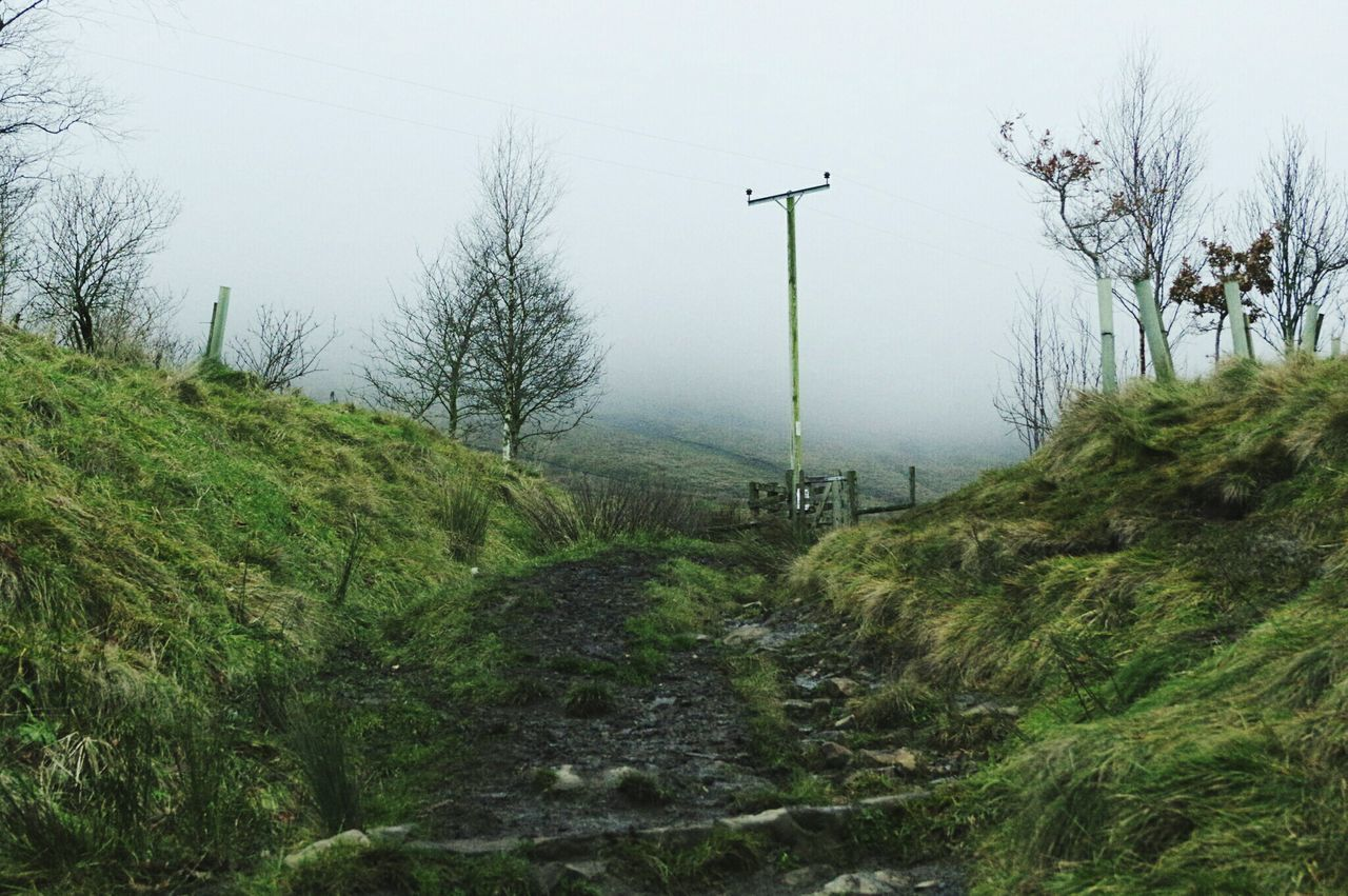 Nature Growth Beauty In Nature Tree Tranquility No People Outdoors Sky Day Nature Reserve Winter Witches Foggy Landscapes Pendle Hill Misty Days Misty Lush - Description Scenics Field Perspective Path Muddy Green Color Telegraph Pole