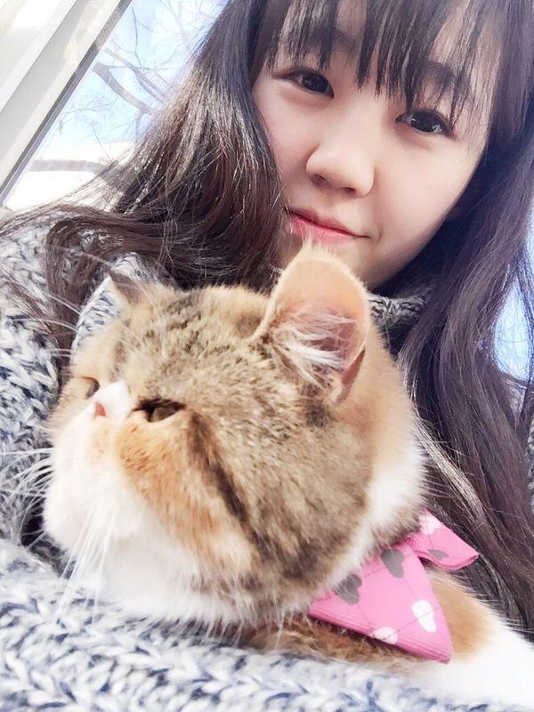可爱。这就是加菲猫么????