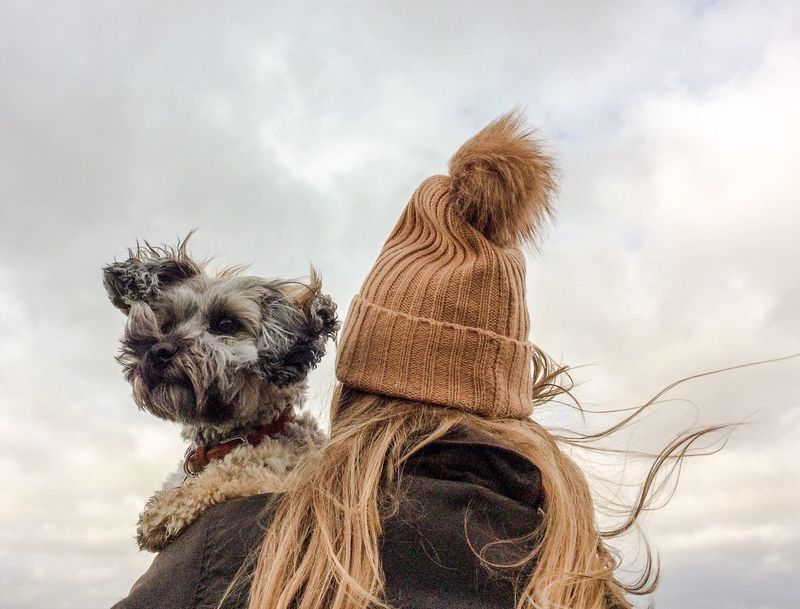 A rear view of a girl in a bobble hat and warm coat, holding her little pet dog on a windy day. Domestic Animals Sky Pets Cloud - Sky Dog Animal Themes One Animal Real People Long Hair Outdoors Lifestyles Bobble Hat  Knit Hat Autumn Windy Hair Blowing In The Wind Fall Dog Walking Holding Carrying Girl Dog Love Dog Lover Shoulder Winter Fresh On Market 2017 Shades Of Winter