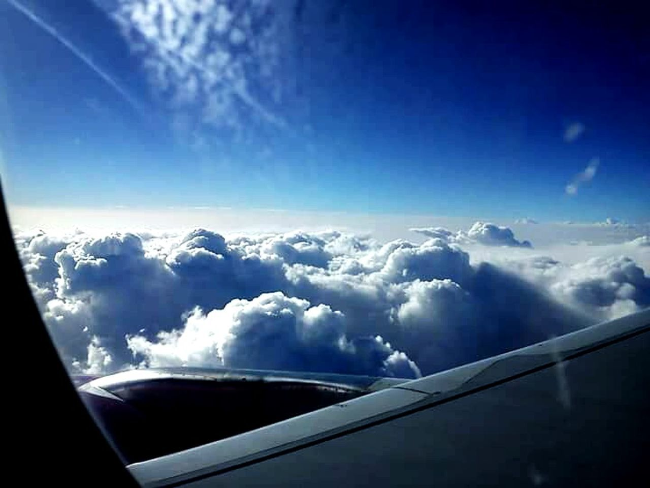 Airplane Sky Above The Clouds Wizz Blue Sunshine