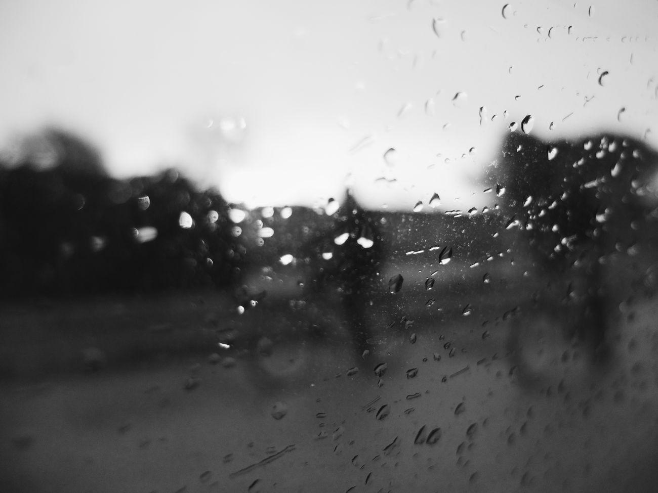 Osservare qualcosa o qualcuno va oltre il semplice Guardare. Bnw Black And White Rain Window Taking Photos Bnw_photography Ness