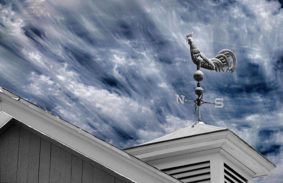 Beautiful stock photos of unicorn, Animal Representation, Architecture, Art, Building Exterior