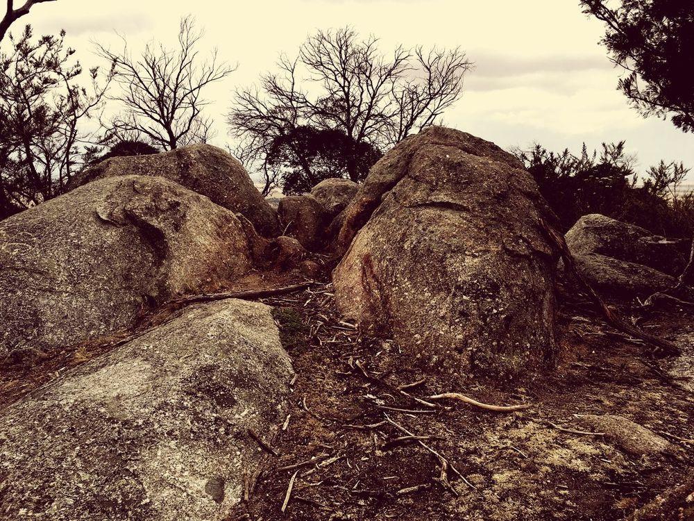 You yangs park Beautiful You Yangs Park Trees Big Rocks