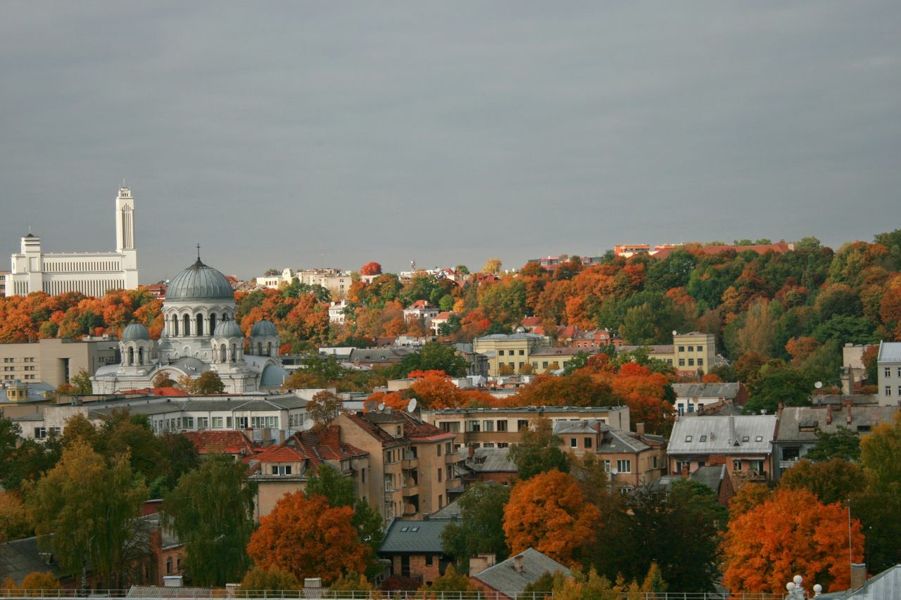 Lithuania City City View  Kaunas City Kaunas No People Autumn Colors Tree Autumn Leaves Colors Autum Colors Easterneurope