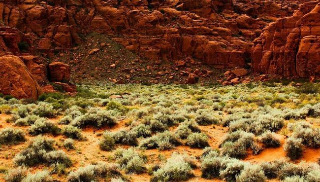 Red rock First Eyeem Photo