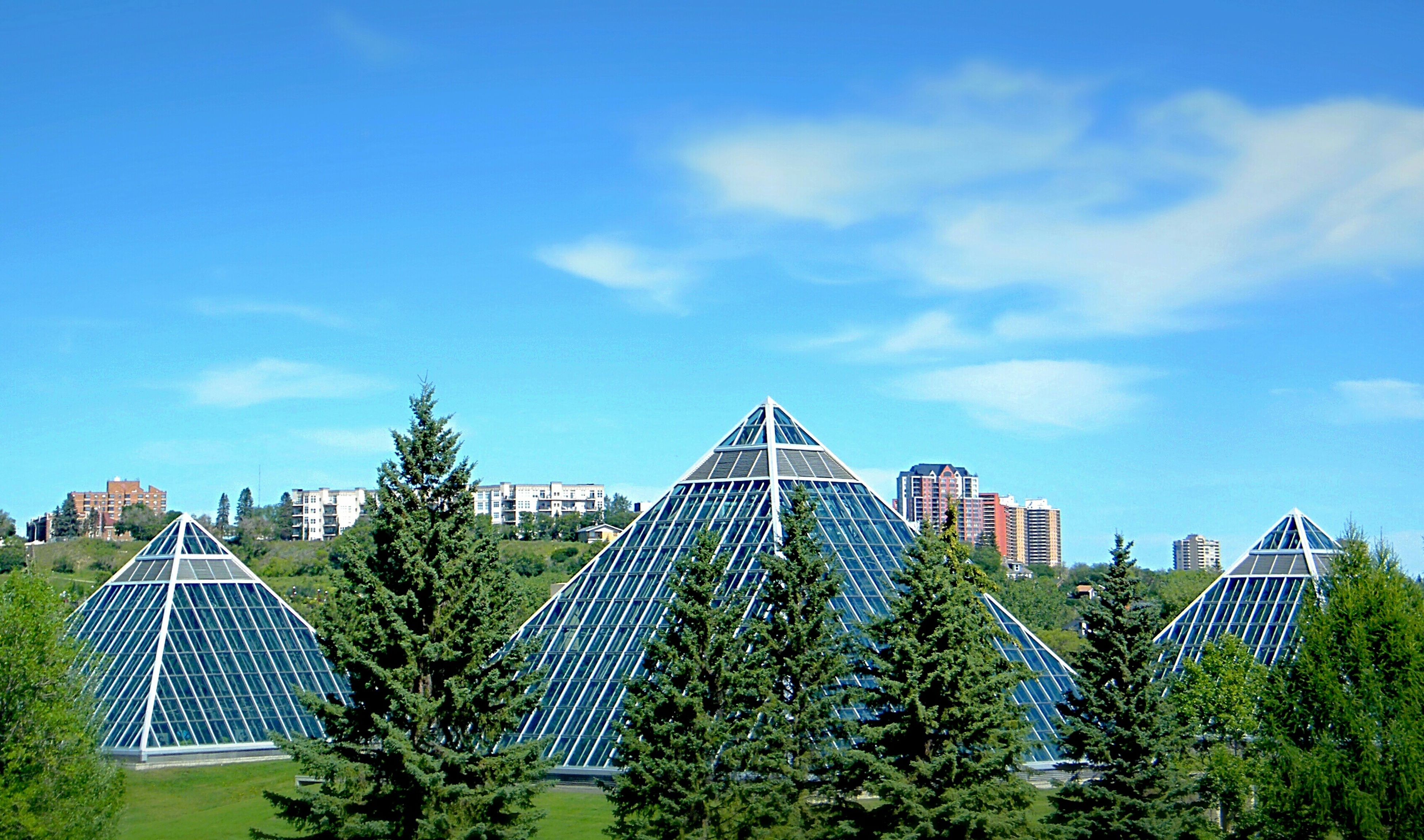 building exterior, architecture, built structure, blue, sky, tree, low angle view, growth, city, cloud - sky, cloud, green color, house, sunlight, day, roof, outdoors, residential building, modern, residential structure