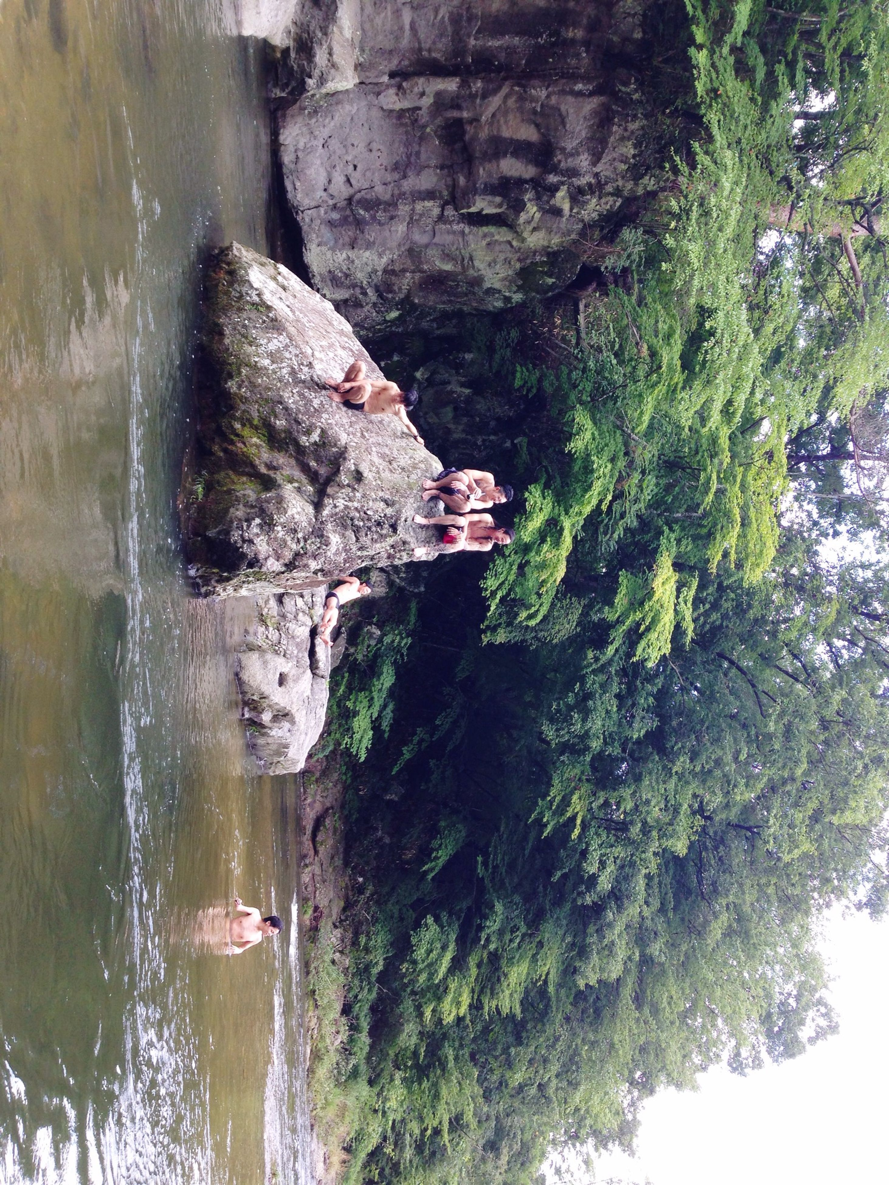 water, rock formation, rock - object, tree, beauty in nature, cliff, river, waterfront, nature, scenics, lake, tranquil scene, tranquility, day, rock, reflection, tourist, person, mountain