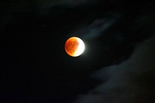Before the clouds rolled in Nature_collection EyeEm Nature Lover Solar Eclipse 2015 Bloodmoon Supermoon2015