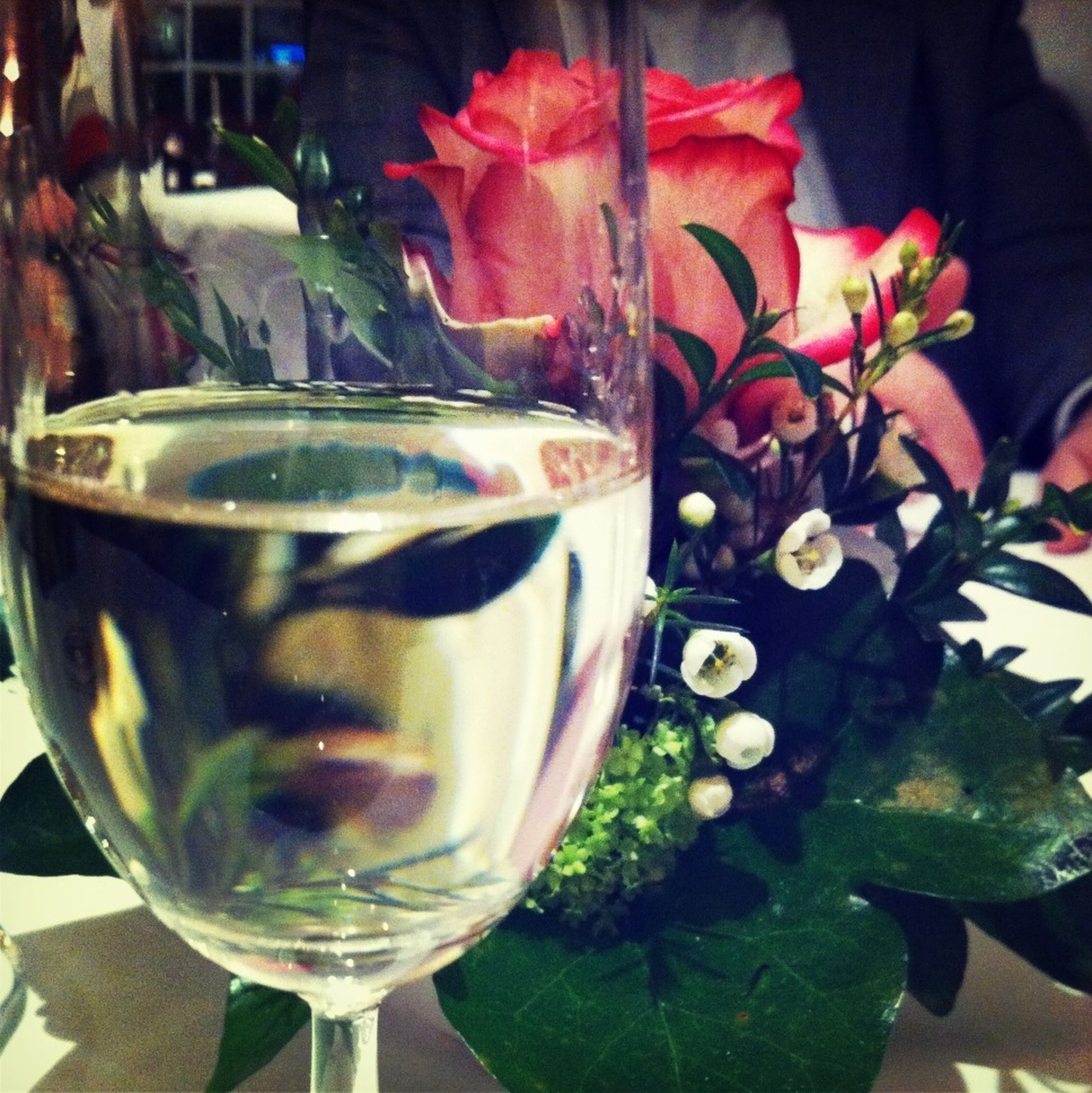 freshness, drink, drinking glass, food and drink, table, indoors, glass - material, refreshment, transparent, still life, close-up, glass, wineglass, alcohol, flower, leaf, fragility, vase, drinking straw, focus on foreground