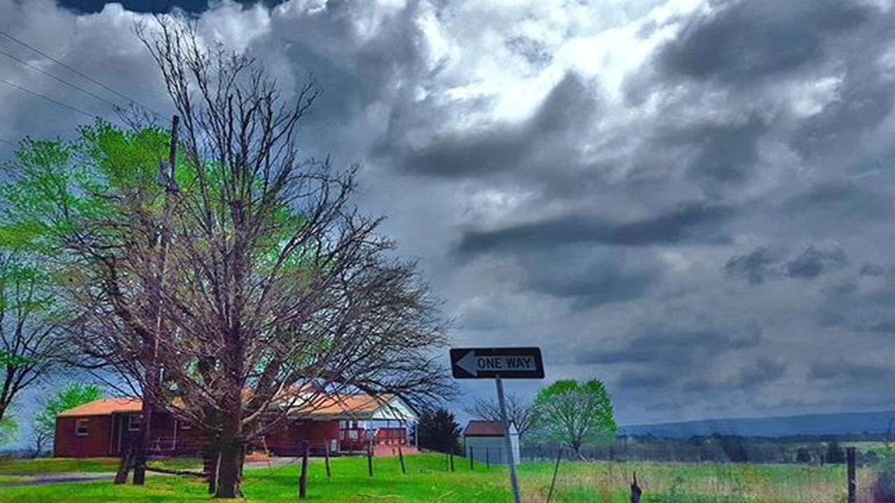 tree, cloud - sky, soccer, basketball - sport, sky, basketball hoop, sport, bare tree, tranquility, outdoors, soccer field, no people, day, grass, nature, architecture, beauty in nature, court
