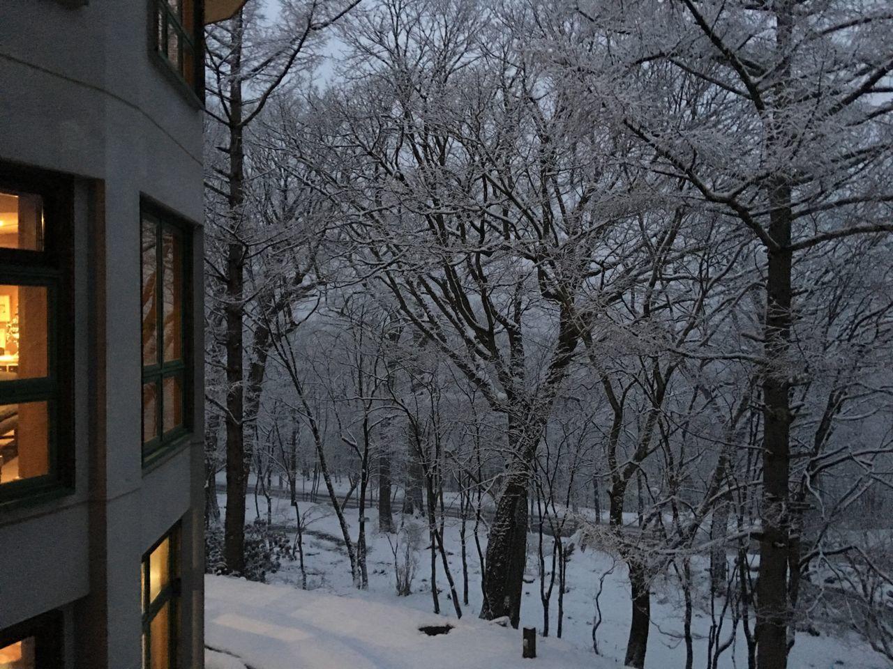 雪の日光もいいものです Hello World Enjoying Life Relaxing Nikko 金谷ホテル Snow 日光 雪
