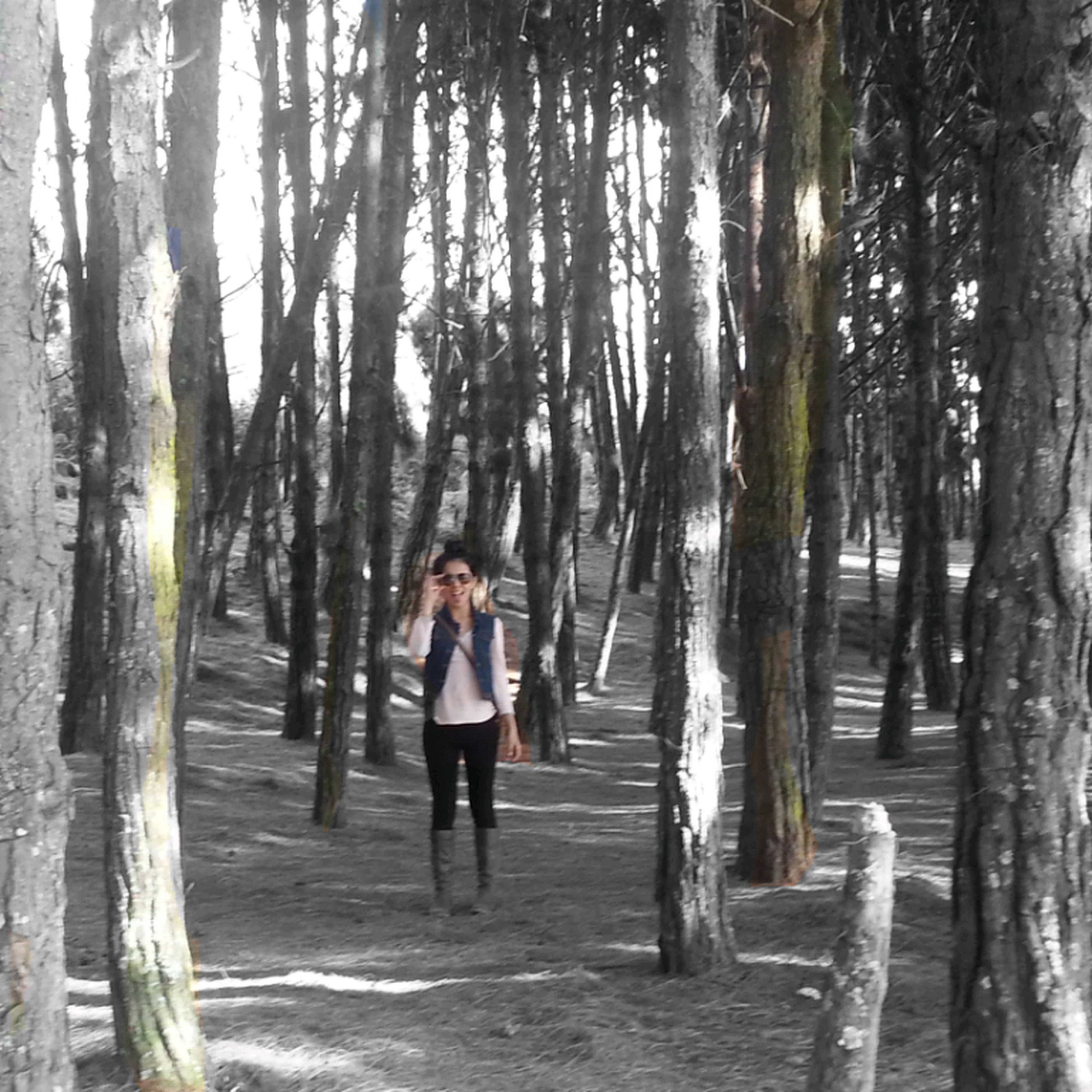 tree, tree trunk, lifestyles, full length, leisure activity, rear view, casual clothing, walking, standing, forest, wood - material, nature, person, outdoors, sunlight, day, men, the way forward