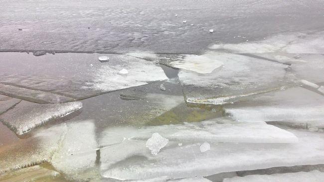 Beach Ice