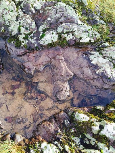 Can you see the face? Nature Geology Outdoors Textured  Beauty In Nature Water_collection River Rock Face Faces In Nature Faces In Nature Faces In Places