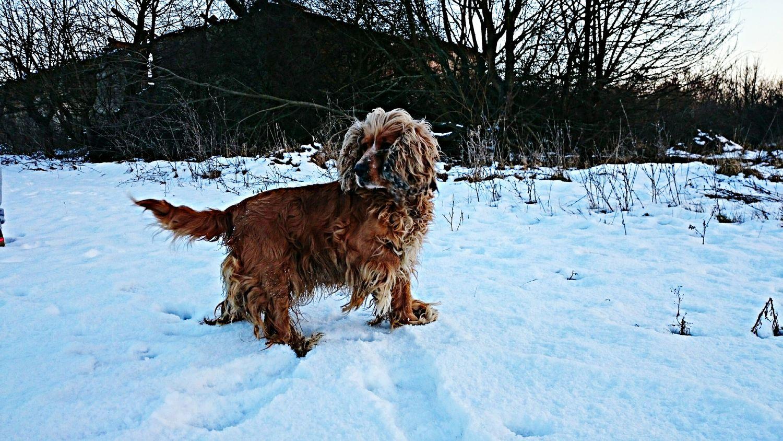 Nela ❤❤❤ Winter Saturday Evening !!!