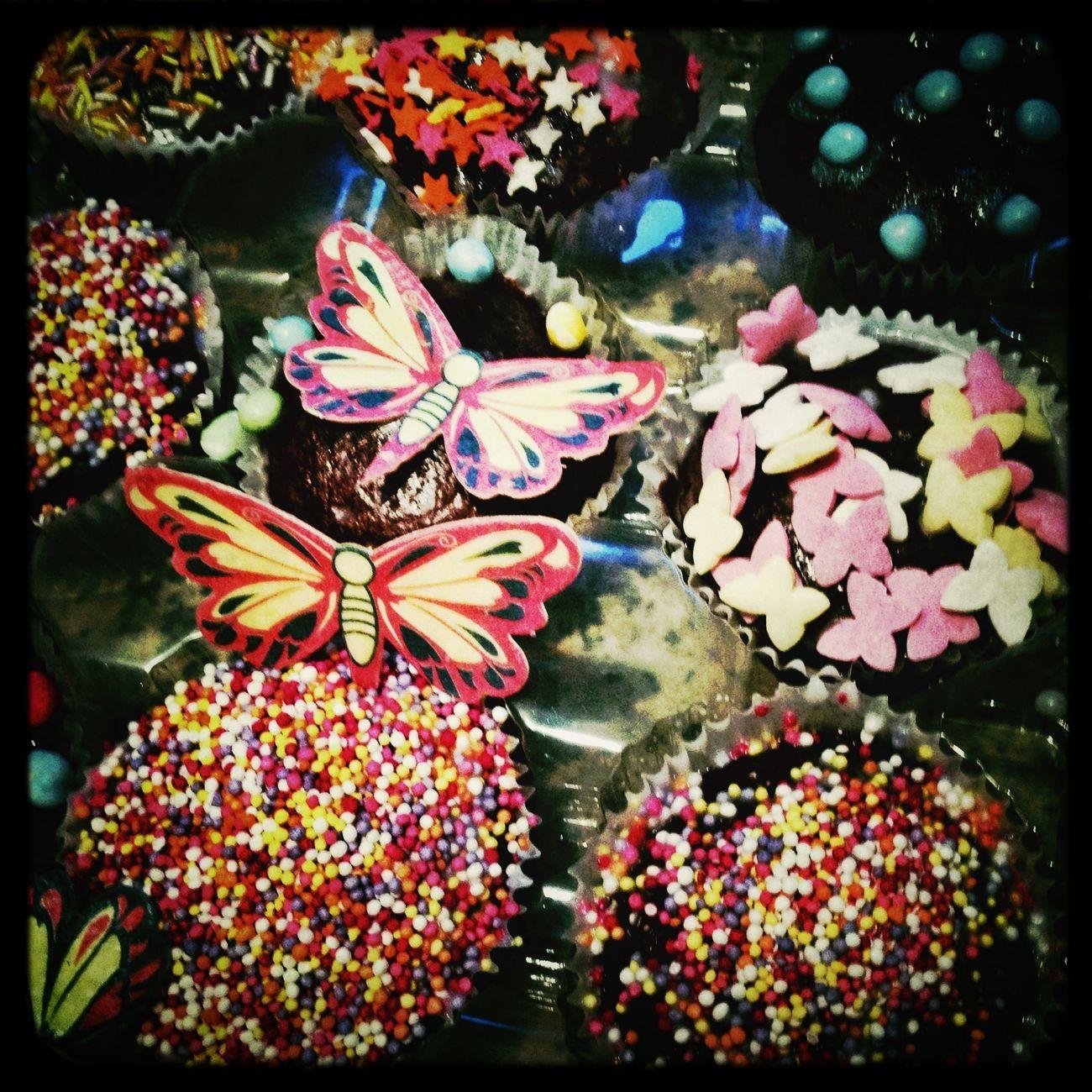 Mulhollands Fairycakes