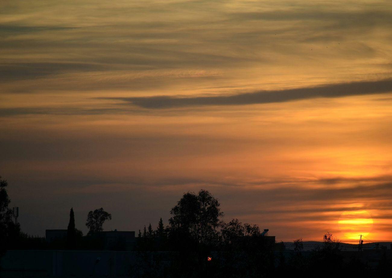Sunset Oujda City, Morocco Beauty Sky Nature